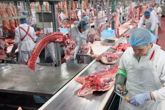 innovacion industria alimenticia