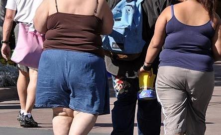 mala-alimentacion-obesidad