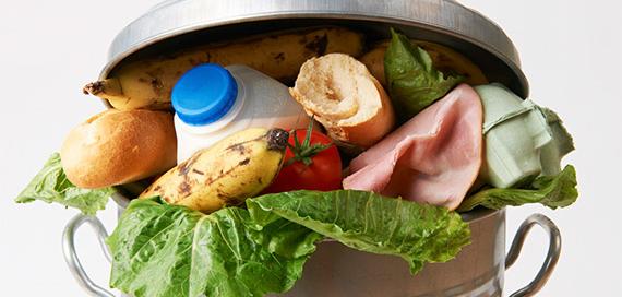 desperdicio de comida